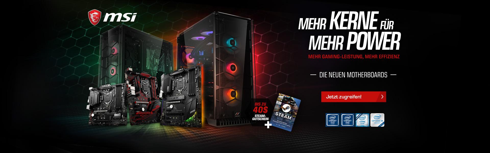 MSI 300 Series + Steam-Gutschein