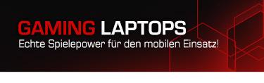 Gaming Laptops mit GTX 1660 (Ti)