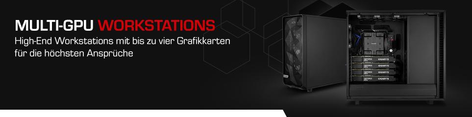 Multi-GPU Workstations