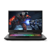 "High-End Laptop i7 11700K - RTX 3080 (17,3"")"